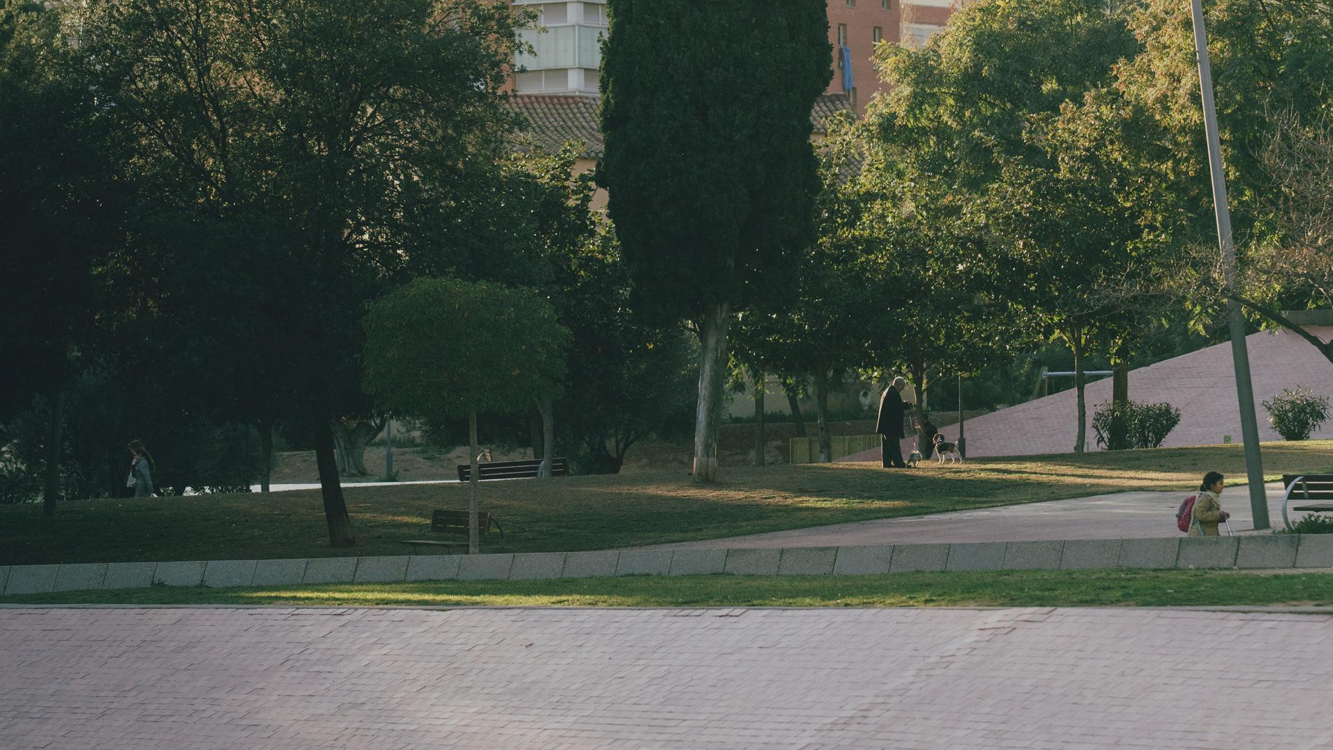 Imatge de La Guineueta