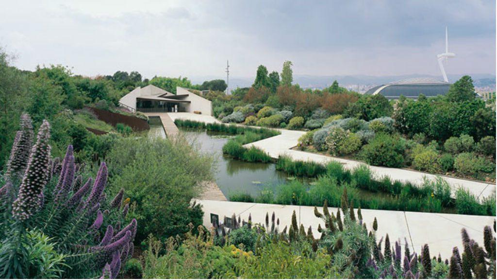 jardi botanic