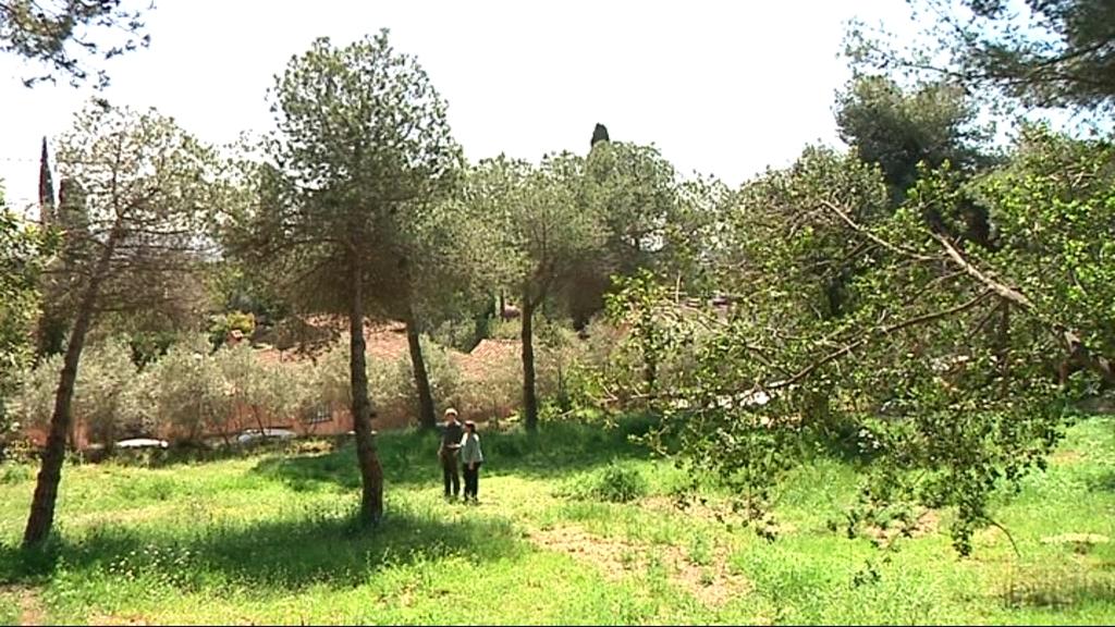 Parc Oreneta espai verd