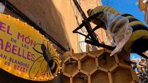 Joan Blanques de Baix - Món d'abelles