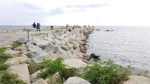 Prop de 150 voluntaris han ajudat a pentinar la platja