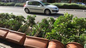 El vent ha tombat aquesta renglera de testos de l'avinguda del Paral·lel