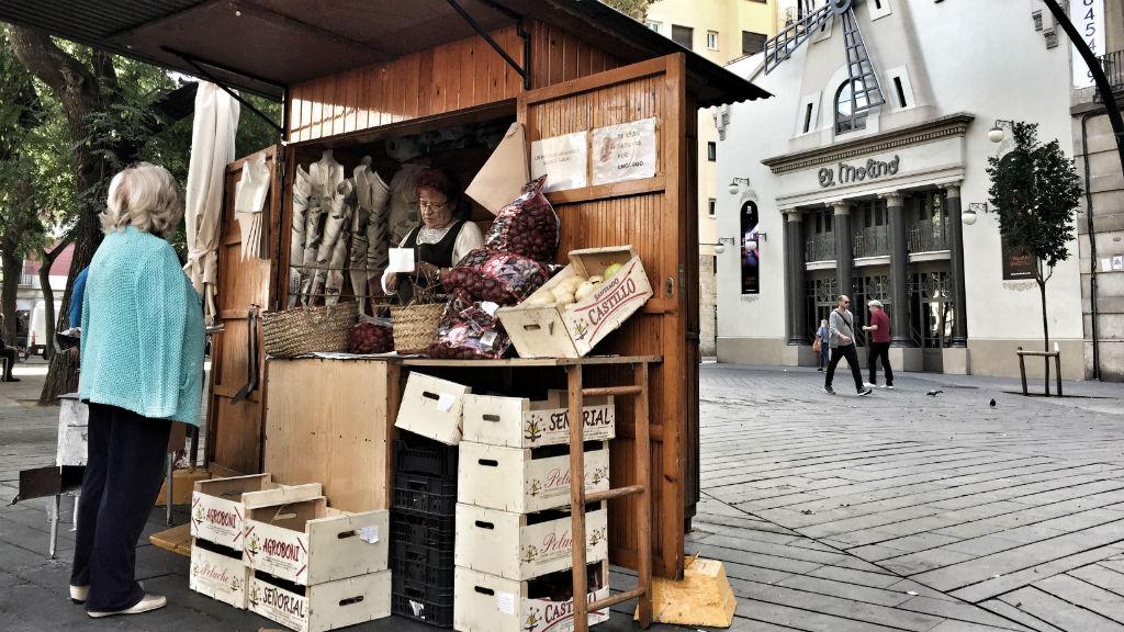 Castanyera a la plaça de la Bella Dorita