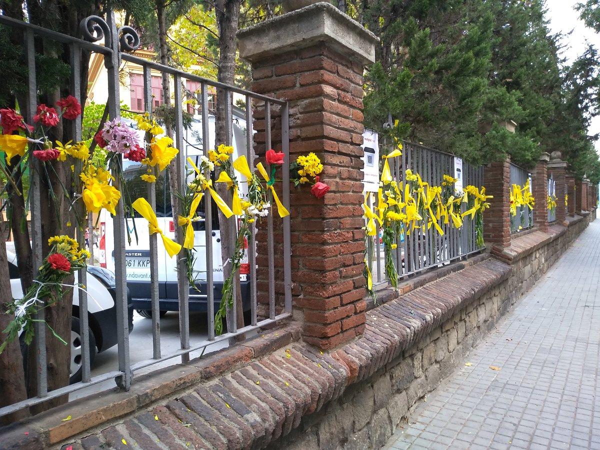 Escola Ramon Llull 1-O 2018 flors grogues