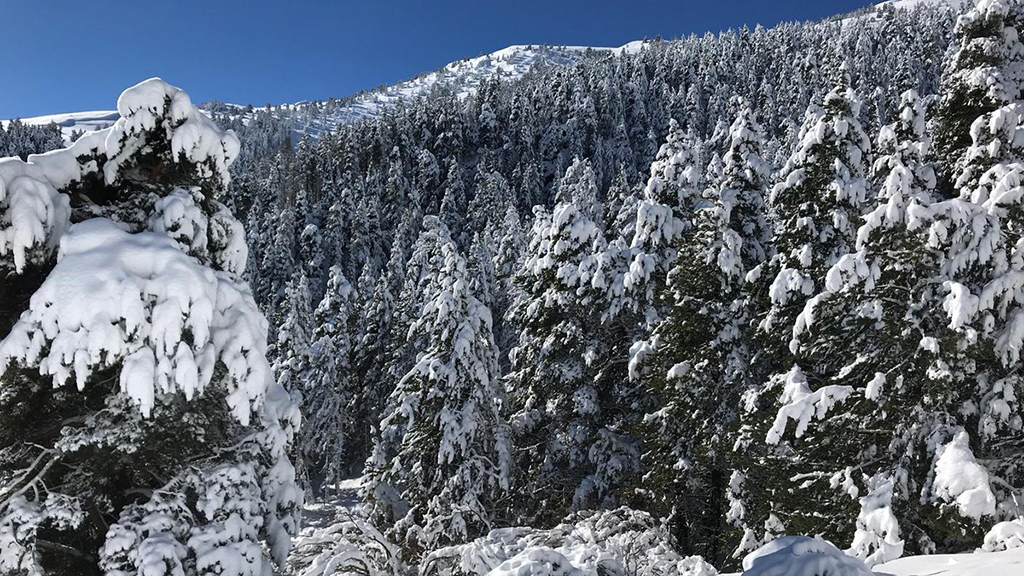 imatge del massís de la Tosa d'Alp