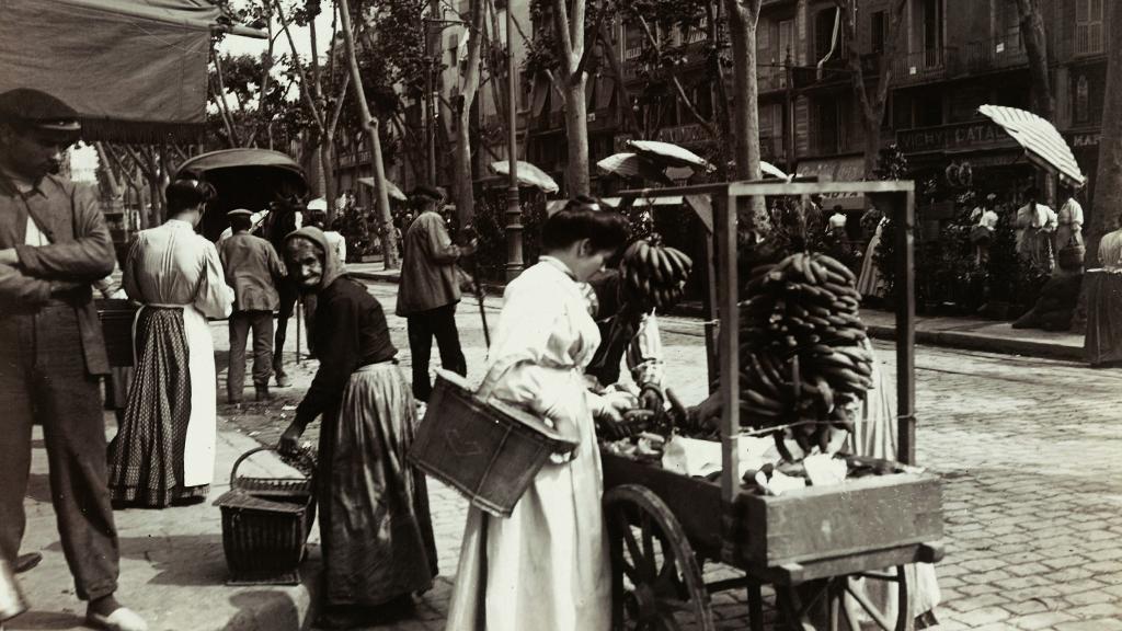 1 24x576_0014_1907-1908 boqueria rambla fruita