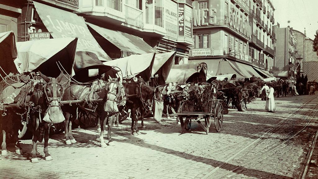1 24x576_0018_1907-1908 boqueria carruatges