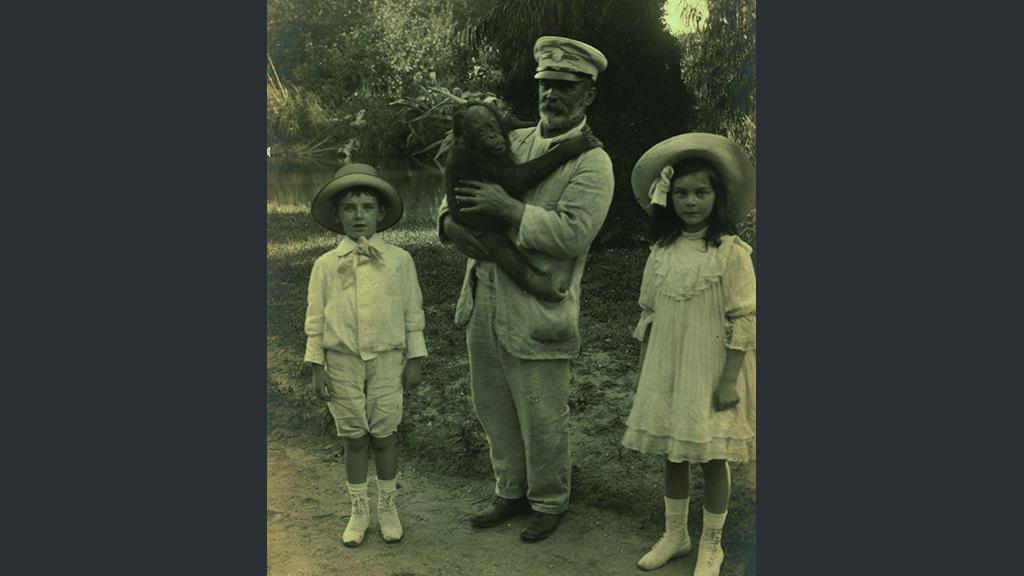 1024x576_0008_1900 1910 ximpanze a passeig pel zoo