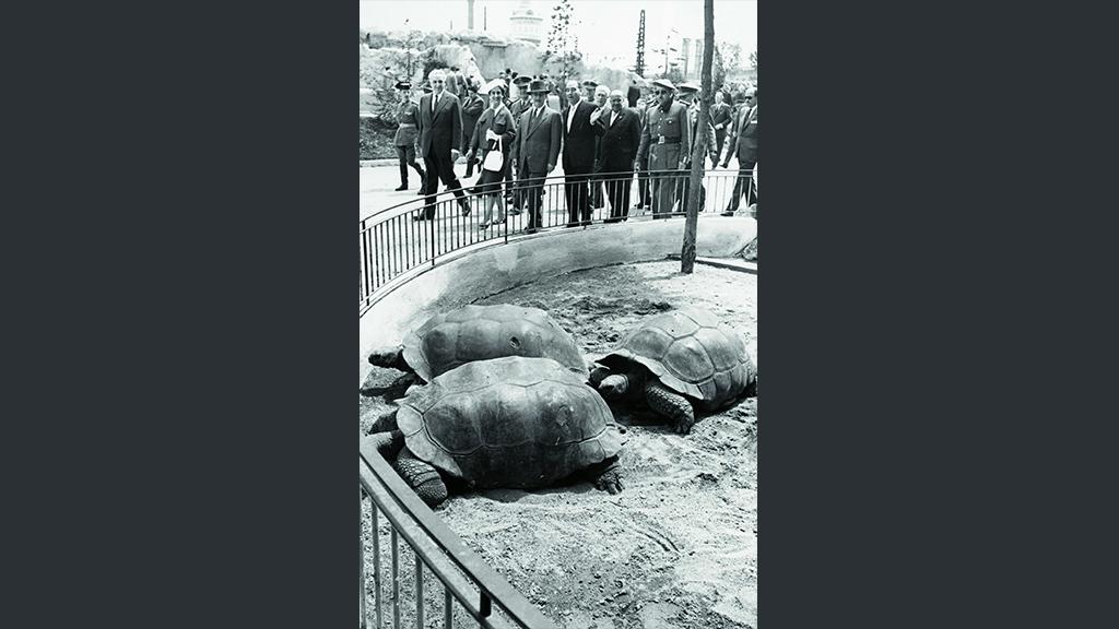 1024x576_0033_1960 Franco visita el Zoo