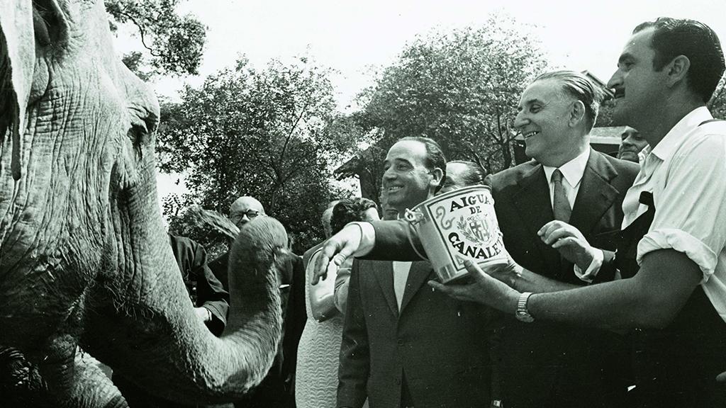 1024x576_0034_1957 Porcioles bateja lelefant del Zoo