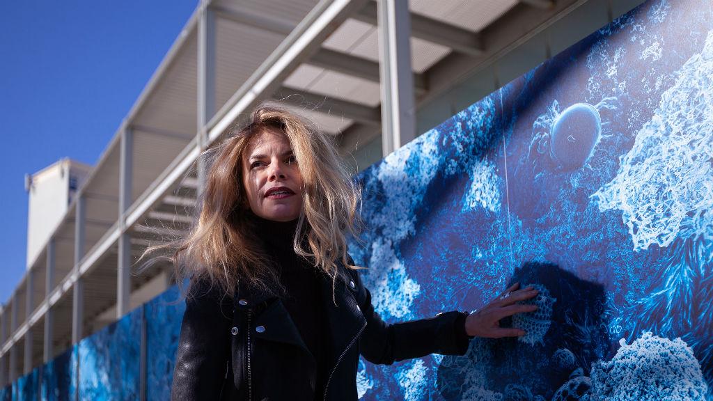 mural centre mediterrani d'investigacions marines i ambientals