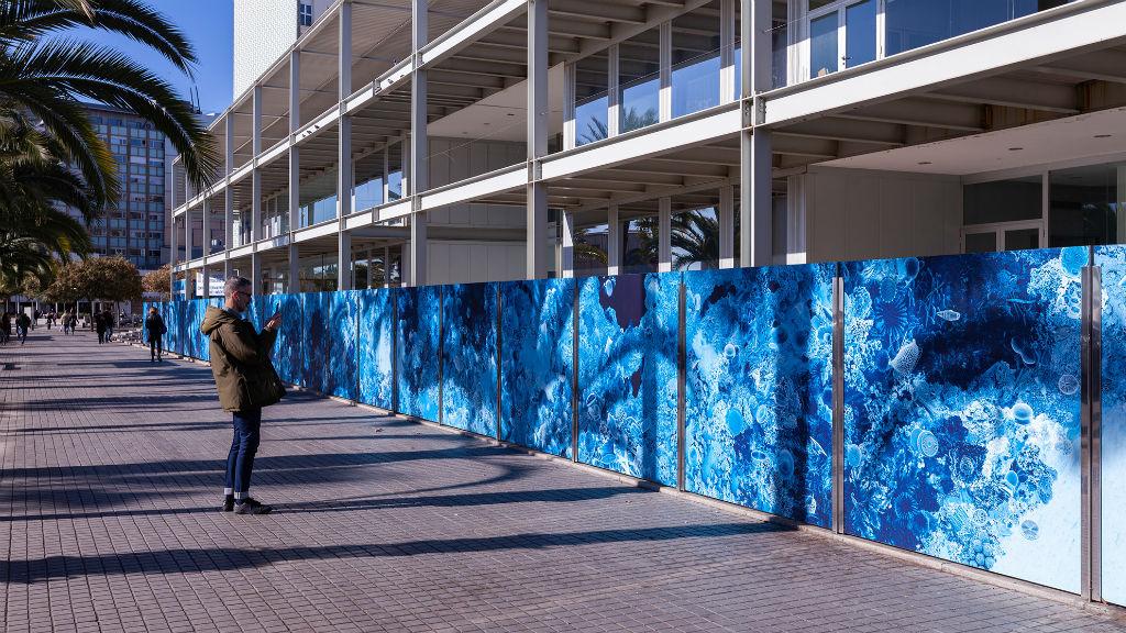 mural centre Mediterrani investigacions marines i mediambientals