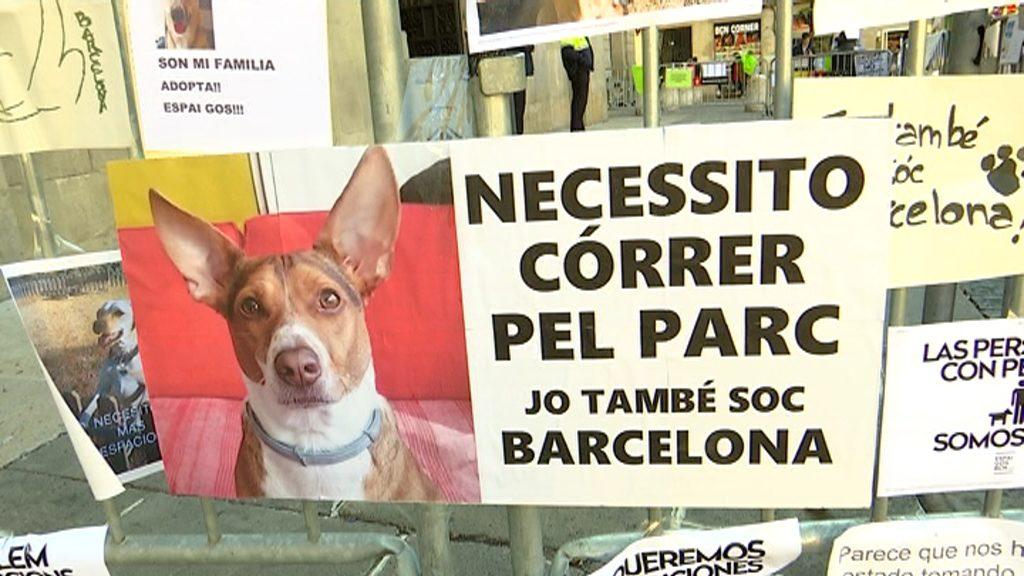 Protesta de gossos a Sant Jaume