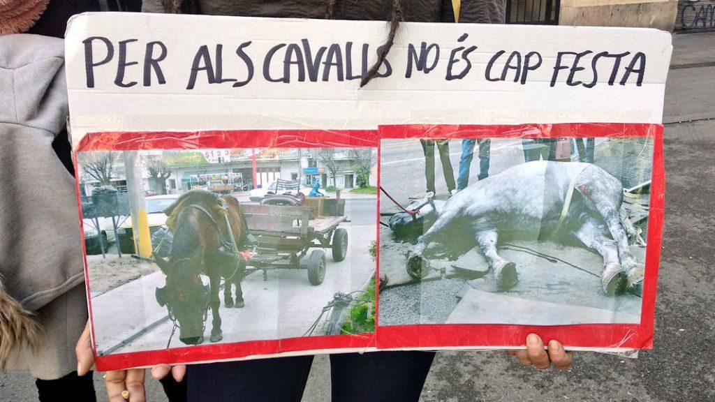 Protesta PACMA