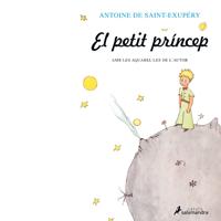 'El Petit Príncep'