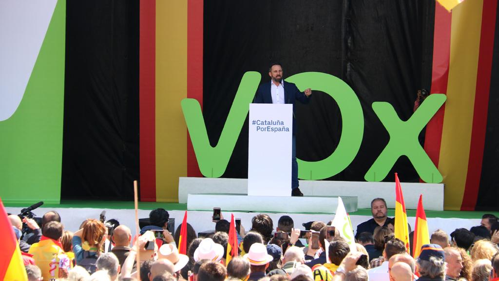 programa electoral vox