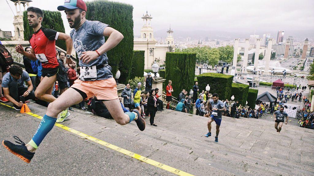 Salomon Run Vertical 2018