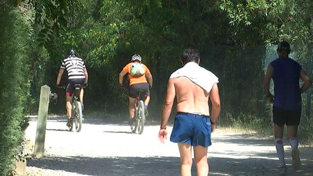 Bicicletes al parc de Collserola