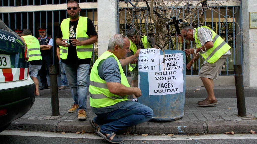 pagesos-lleidatans-planten-olivera-davant-departament