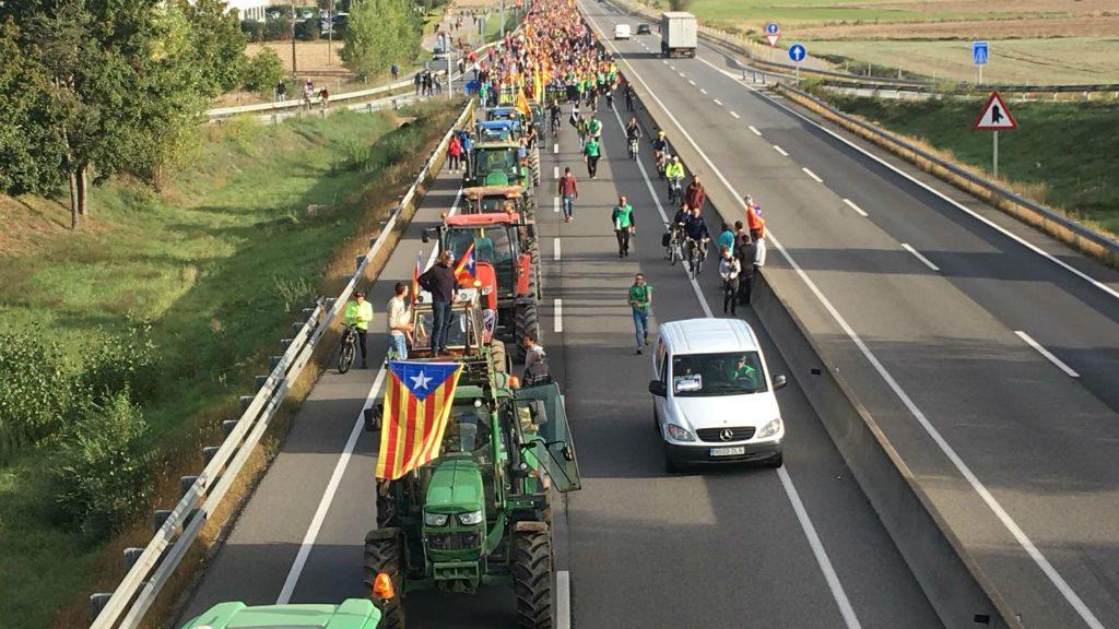 tractors Vic