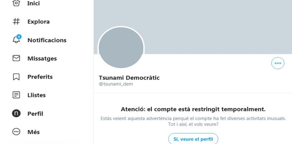 Tsunami Democratic Twitter