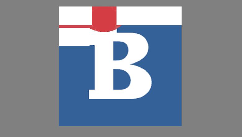 logo btv 1994