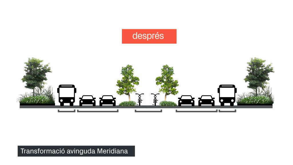secció Meridiana reforma