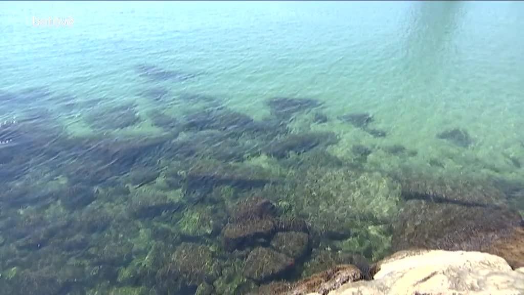 Aigua platja Barcelona