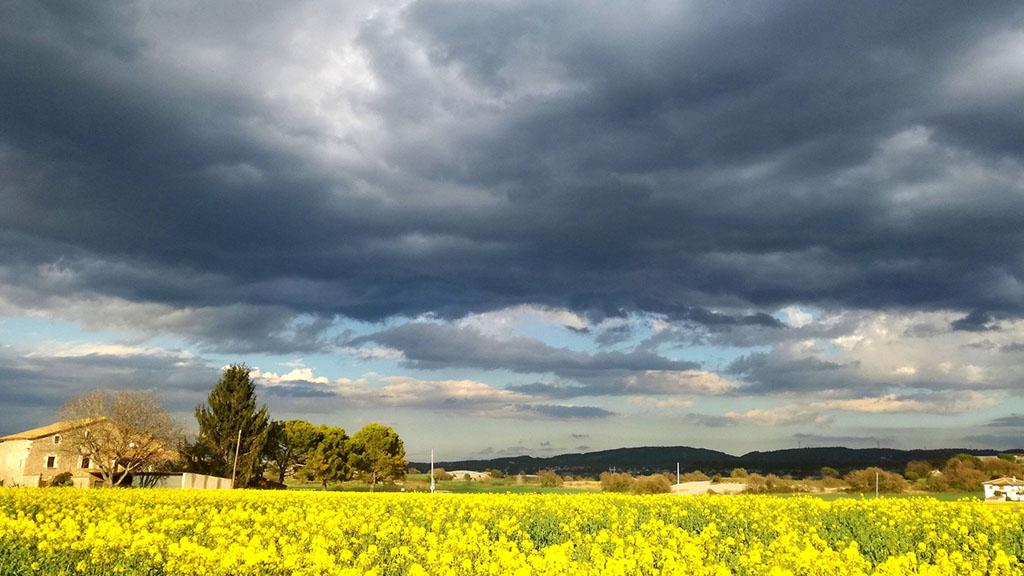 temps-primavera