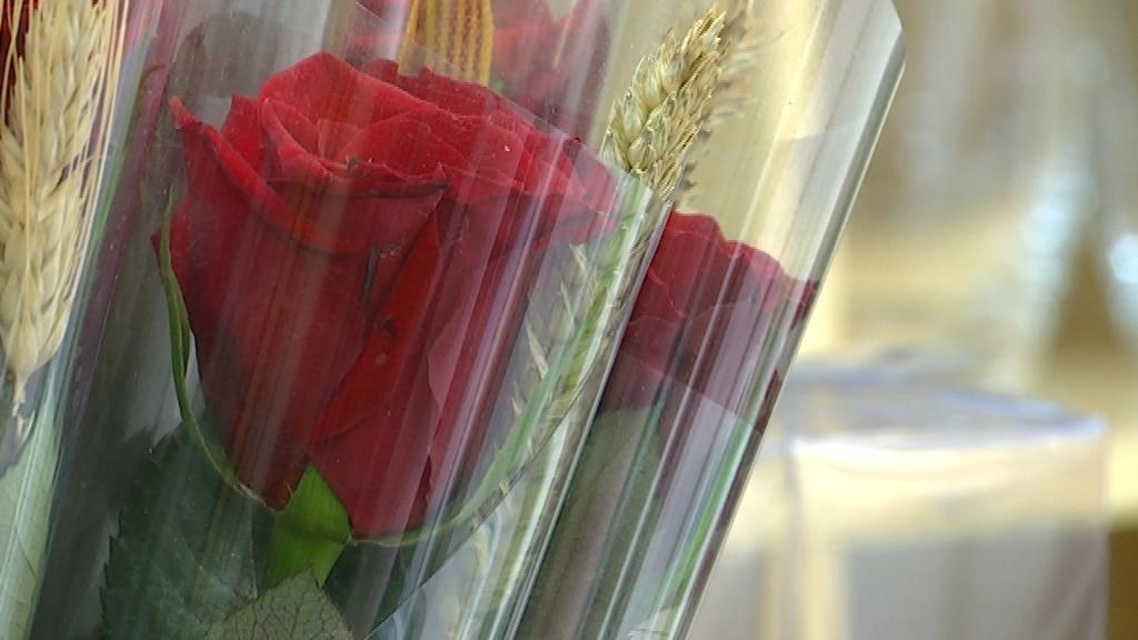 roses sant jordi juliol 2020