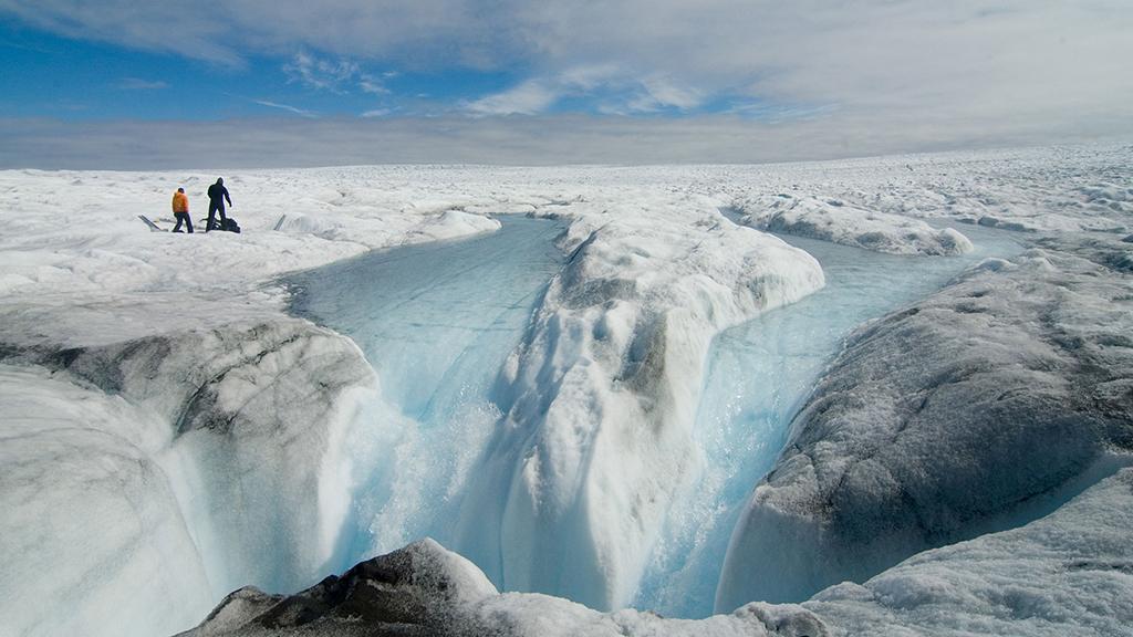 groenlandia perdua gel 23082020