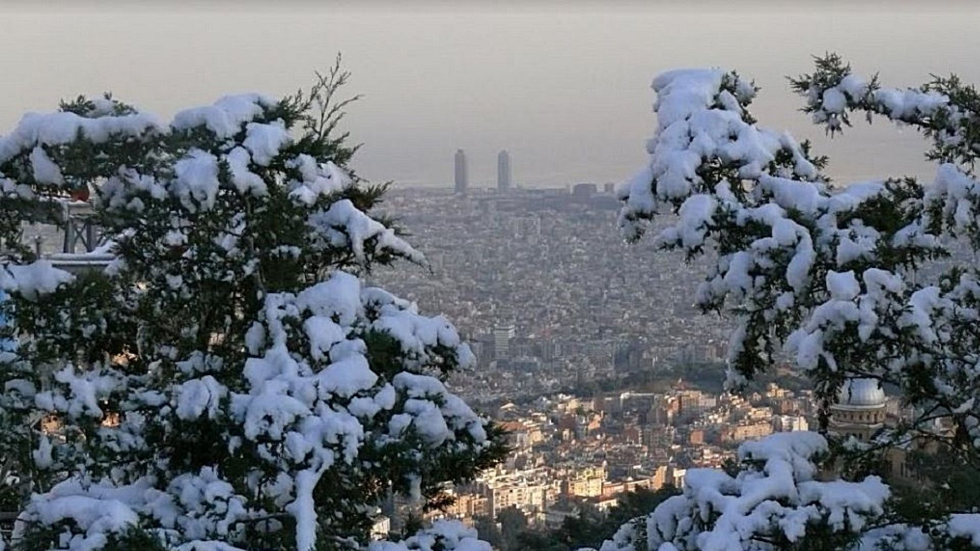 neu Barcelona Filomena
