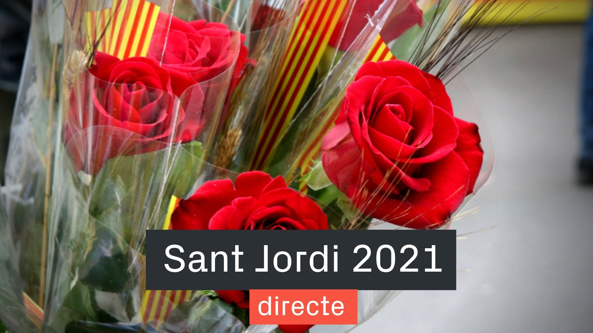 sant jordi 2021 directe