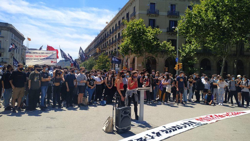 lectura manifest estudiants vaga universitats