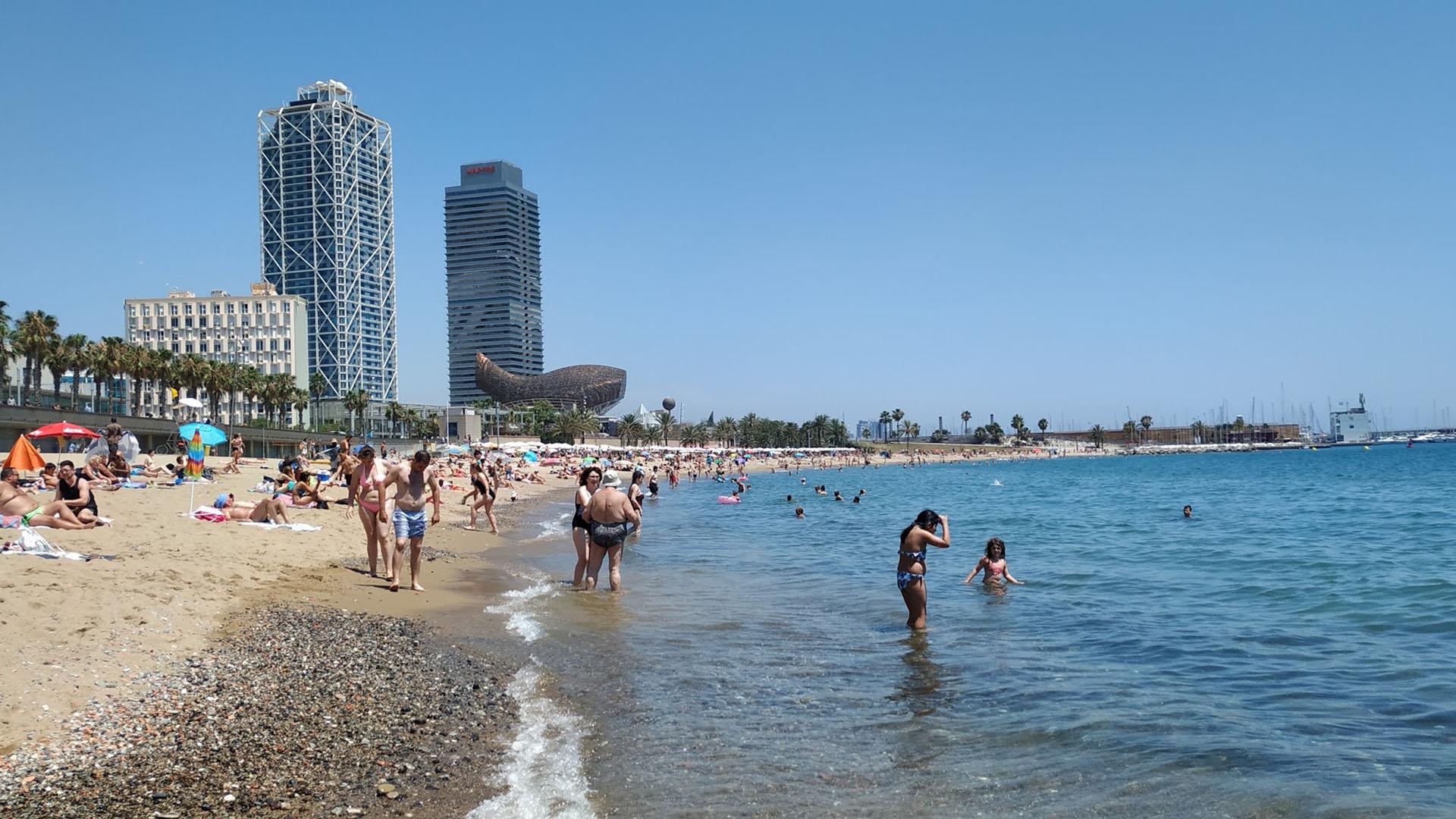 Platja del Somorrostro el juliol de 2019. L'aigua del mar toca ara els 24 ºC