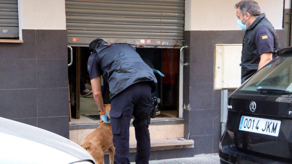 unitat canina mossos operacio antidroga Gavà