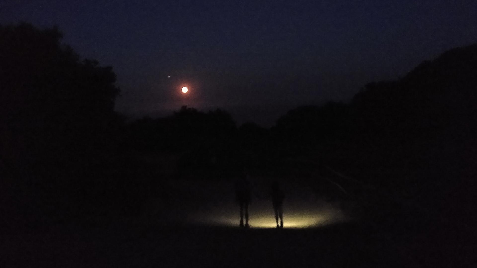 cel nocturn