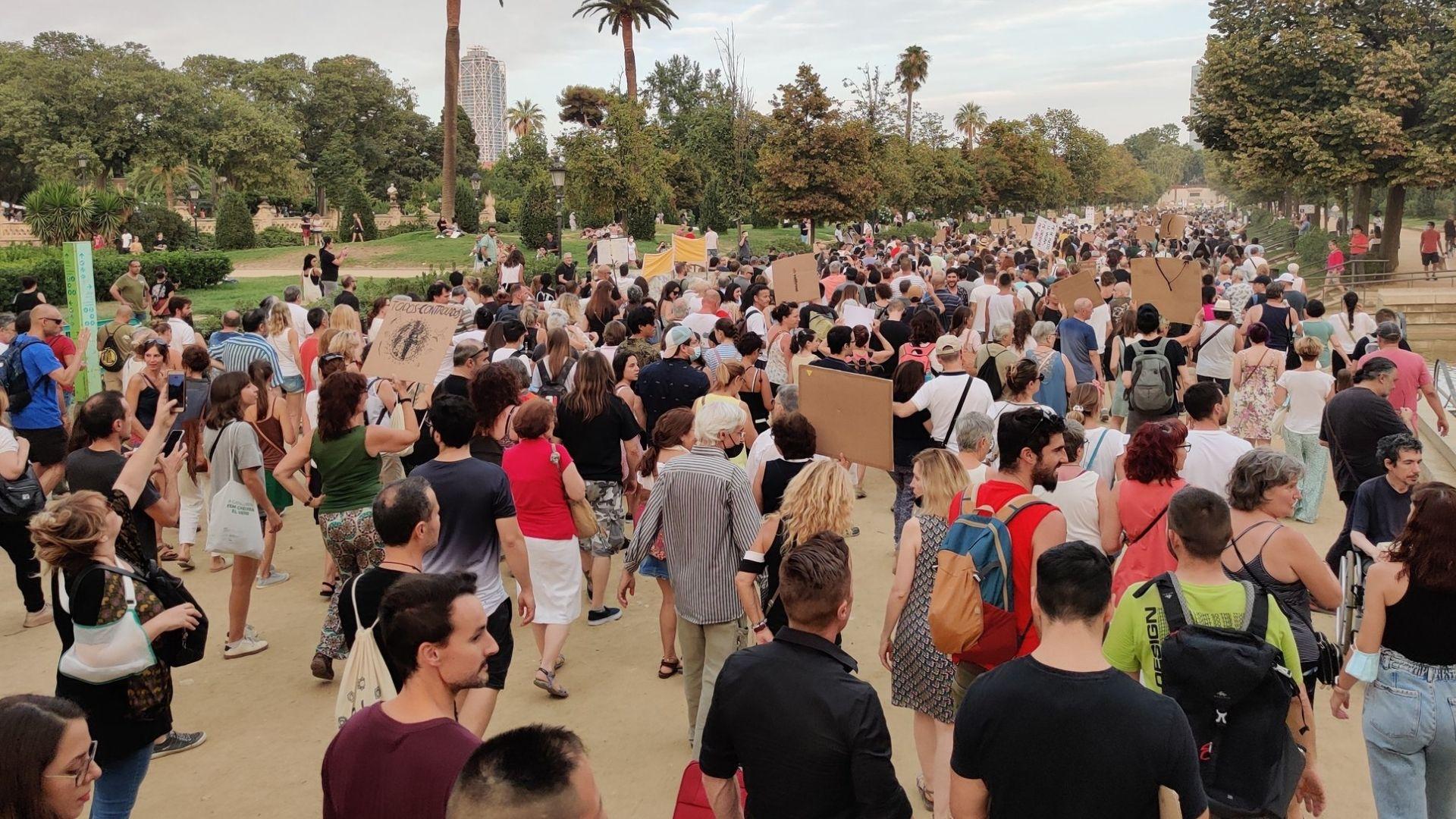 manifestació negacionista a Barcelona